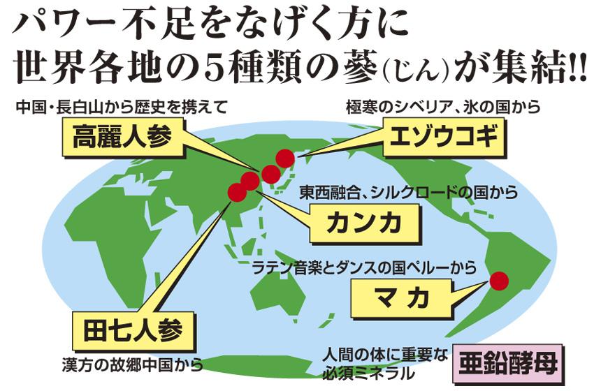 パワー不足をなげく方に、世界各地の5種類の蔘(じん)が集結!!